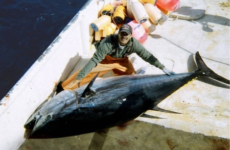 Courtesy NOAA Fishwatch